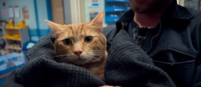 um gato de rua chamado bob livro filme brenda manea 2017 blog loucuras de julia 07